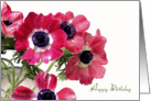 Happy Birthday, red flowers photography card