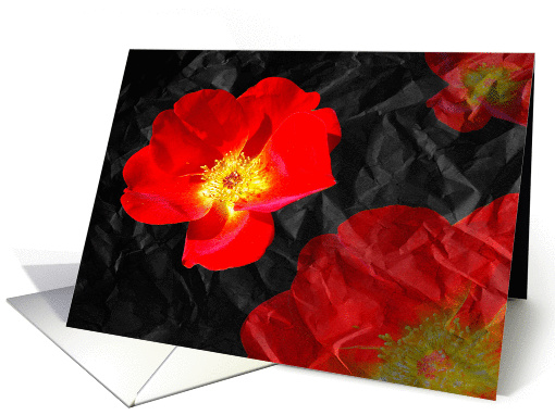 Crumpled Roses card (370710)