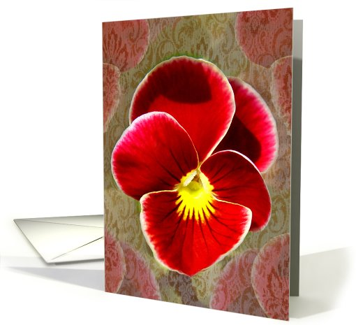 Pansy Patterns card (488056)