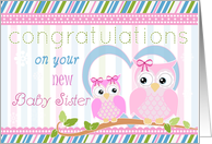 Congratulations on New Baby Sister- Two Cute Owls card