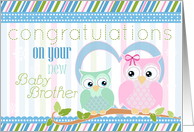 Congratulations on New Baby Brother- Two Cute Owls card