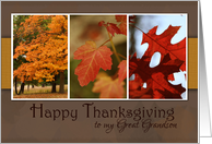 Trio of Fall Foliage- Happy Thanksgiving for Great Grandson card