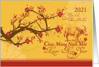 Vietnamese New Year 2021-Year of the Water Buffalo- Cherry Blossoms card