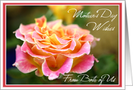 Pink Rose Mother's Day- From Daughter and Son-in-Law card