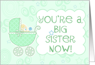 You're a Big Sister Now- New Baby Boy card