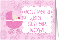 You're a Big Sister Now- New Baby Girl/Sister card