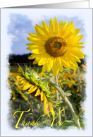 Thank You for standing by me – Sunflower friendship card