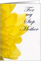 Happy Mother's Day STEP MOTHER (yellow petals) card