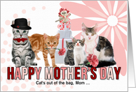 For Mom on Mother's Day from the Litter Cats in Pink and Red card
