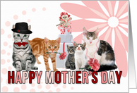 Happy Mother's Day for Cat Lover in Pink and Red card