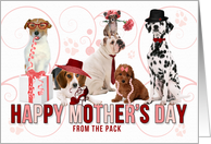 For Mom on Mother's Day from the Pack Dogs in Pink and Red card