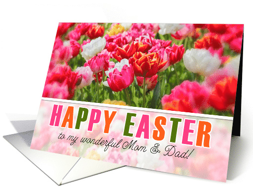 for Mom and Dad on Easter Tulip Garden card (1048701)