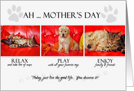 from the Pets on Mother's Day Fun Kitten and Puppy card