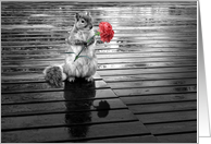 Squirrel with Carnation Black and White Blank Any Occasion card