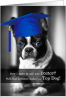 Doctoral PhD Graduate Congratulations Boston Terrier card