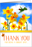Thank You for Being a Bright Spot Daffodil Garden Hummingbird card