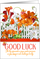 Good Luck Lily Garden with Frog and Butterflies card