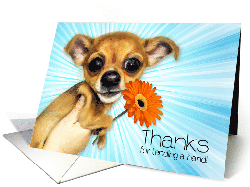 Thanks for Lending a Hand Cartoon Chihuahua Puppy card (1631992)