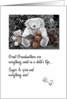 Happy Grandparents Day for Great Grandma with Teddy Bears card