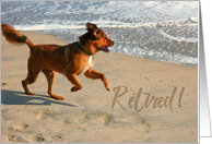 Retirement Announcement Dog with Writing in the Sand card