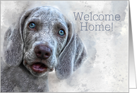 Welcome Home Watercolor Weimaraner Puppy card