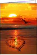 Thank You Written in the Sand on the Beach Sunset with Seagull card