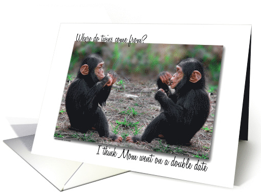 Twin Sister's Birthday Champanzee Twins with Funny Joke card (823137)