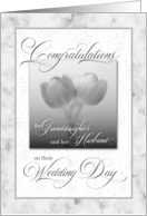 for Granddaughter and Husband Wedding Pink Tulips card