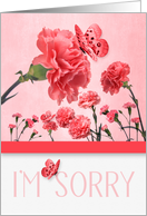 I'm Sorry Pink Carnations with Butterflies card