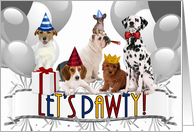 Cute Pack of Dogs in Party Hats Birthday Party Invitation card