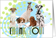 Thank You Pack of Cute Dogs with Blue and Green Geometric Blank card