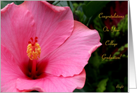 College Graduation,Congratulations! Pink Hibiscus card