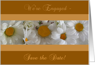 We're Engaged - Save the Date Daisies card