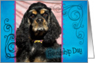 Friendship Day card featuring a tri-color American Cocker Spaniel card