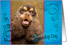 Friendship Day card featuring a chocolate/tan American Cocker Spaniel card