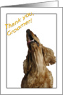 Thank you to Groomer - featuring a Cocker Spaniel card