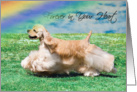 Pet Loss Sympathy Card - Forever In Your Heart Card