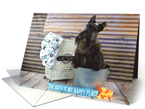 Humorous Happy Birthday Card featuring a Scottie Dog in the Tub card