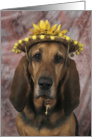 Lola the Bloodhound in a Yellow Daisy Straw Hat card