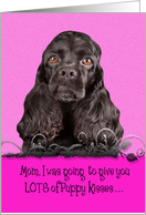 Mothers Day Licker License - featuring a black American Cocker Spaniel card
