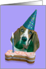 Happy Birthday Card - featuring a Basset Hound card