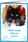 Holiday Greeting Card - featuring a Cat surrounded by blue snowflakes card