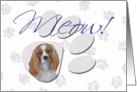 April Fool's Day Greeting - featuring a blenheim Cavalier King Charles Spaniel card
