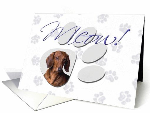 April Fool's Day Greeting - featuring a red Dachshund card (777060)