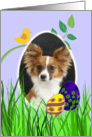Easter Card featuring a Papillon card