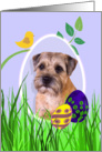 Easter Card featuring a Border Terrier card