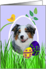 Easter Card featuring a blue merle Australian Shepherd card