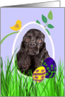 Easter Card featuring a black American Cocker Spaniel card