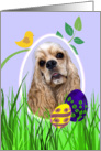 Easter Card featuring a buff American Cocker Spaniel card