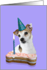 Birthday Card featuring a Jack Russell Terrier card